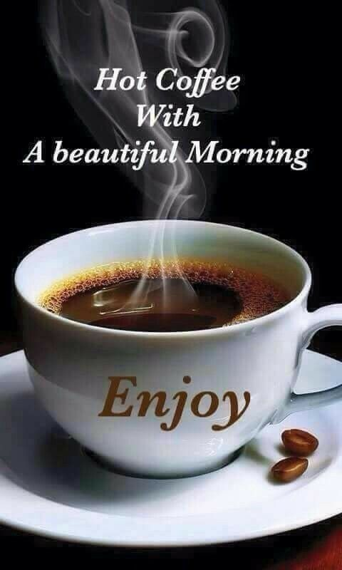 Hot Coffee With A Beautiful Morning Pictures Photos And