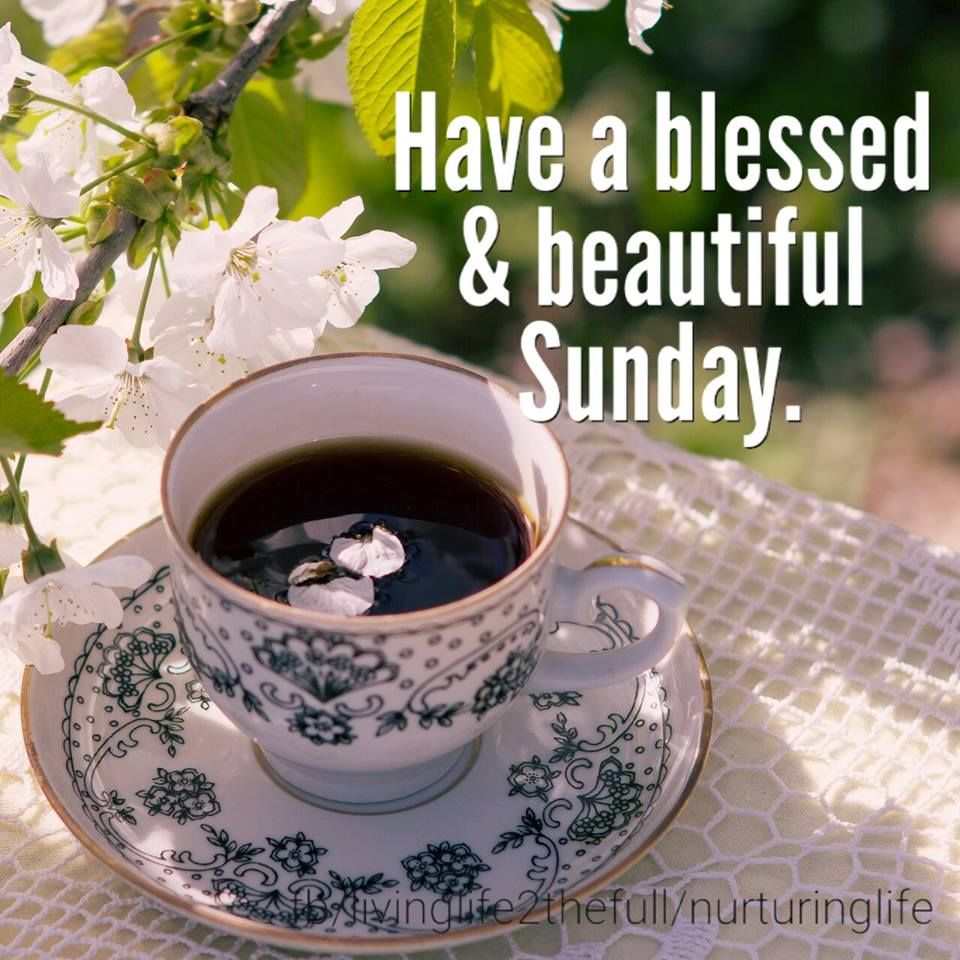 67 Best Trending News Viral Videos Images On Pinterest: Have A Blessed & Beautiful Sunday Pictures, Photos, And