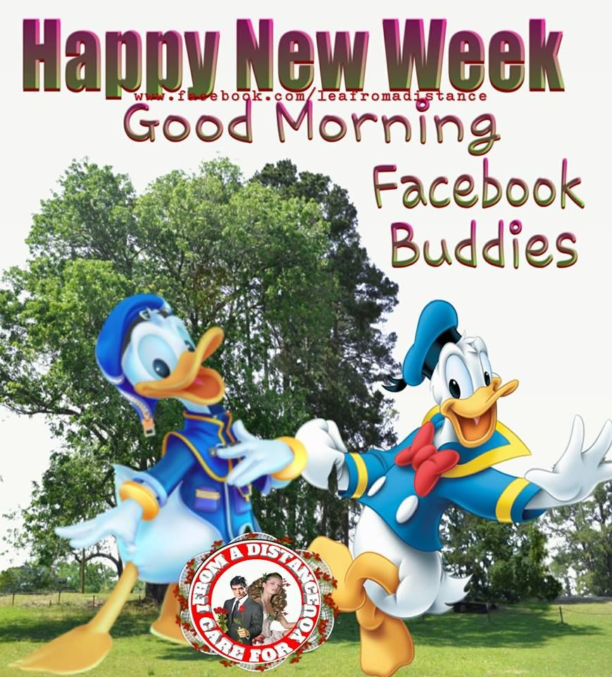 67 Best Trending News Viral Videos Images On Pinterest: Happy New Week, Good Morning Facebook Buddies Pictures