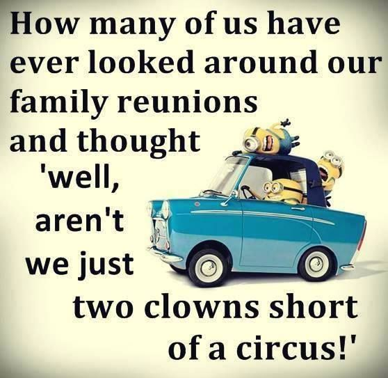 We Just Two Clowns Short Of A Circus Pictures, Photos, and ...