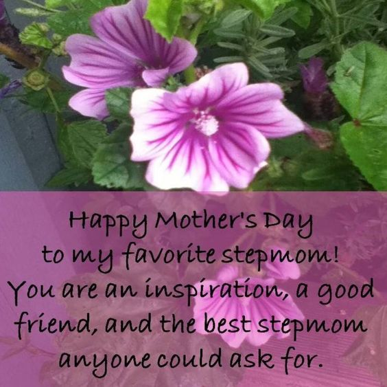 To My Favorite Stepmom, Happy Mother's Day! Pictures ...