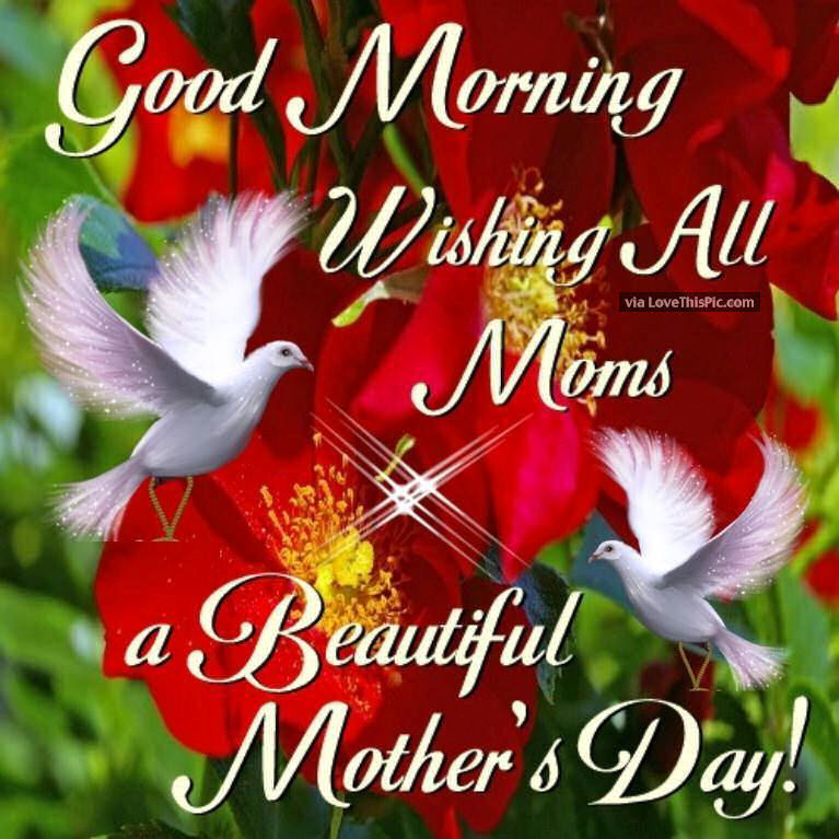 Good Morning Beautiful Mother : Good morning wishing all moms a beautiful mothers day