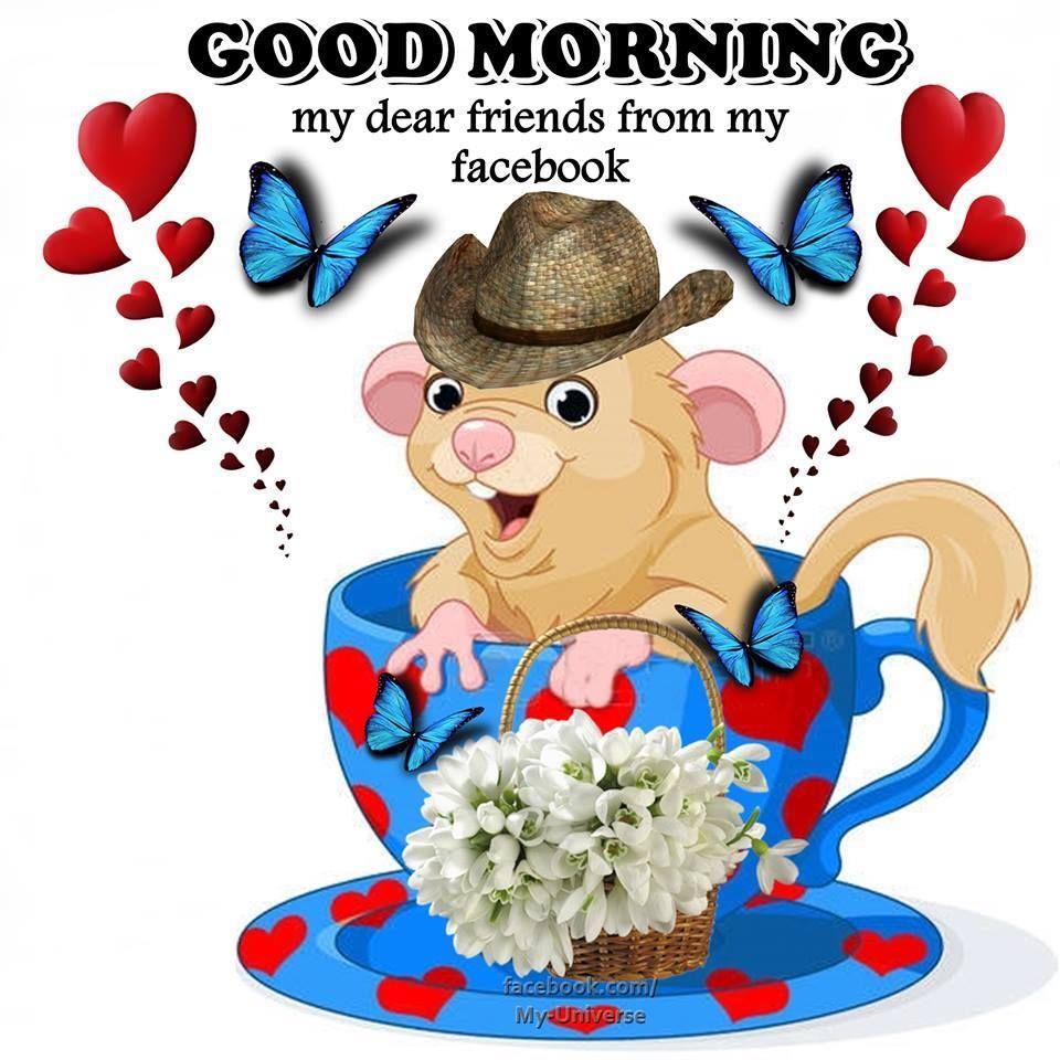 Hello Good Morning My Dear Friends