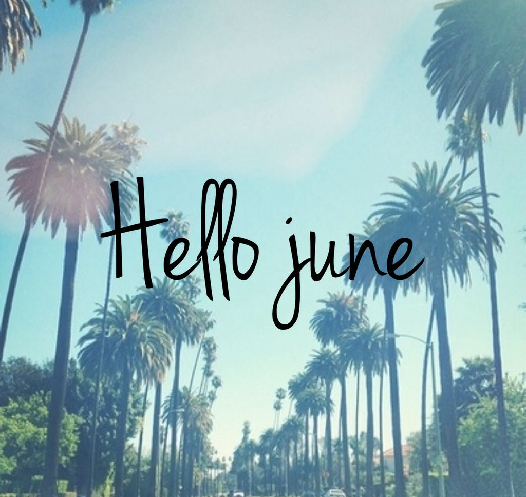 Palm Tree Hello June