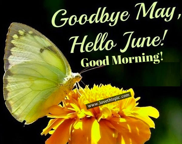 Goodbye May Hello June Good Morning Pictures Photos