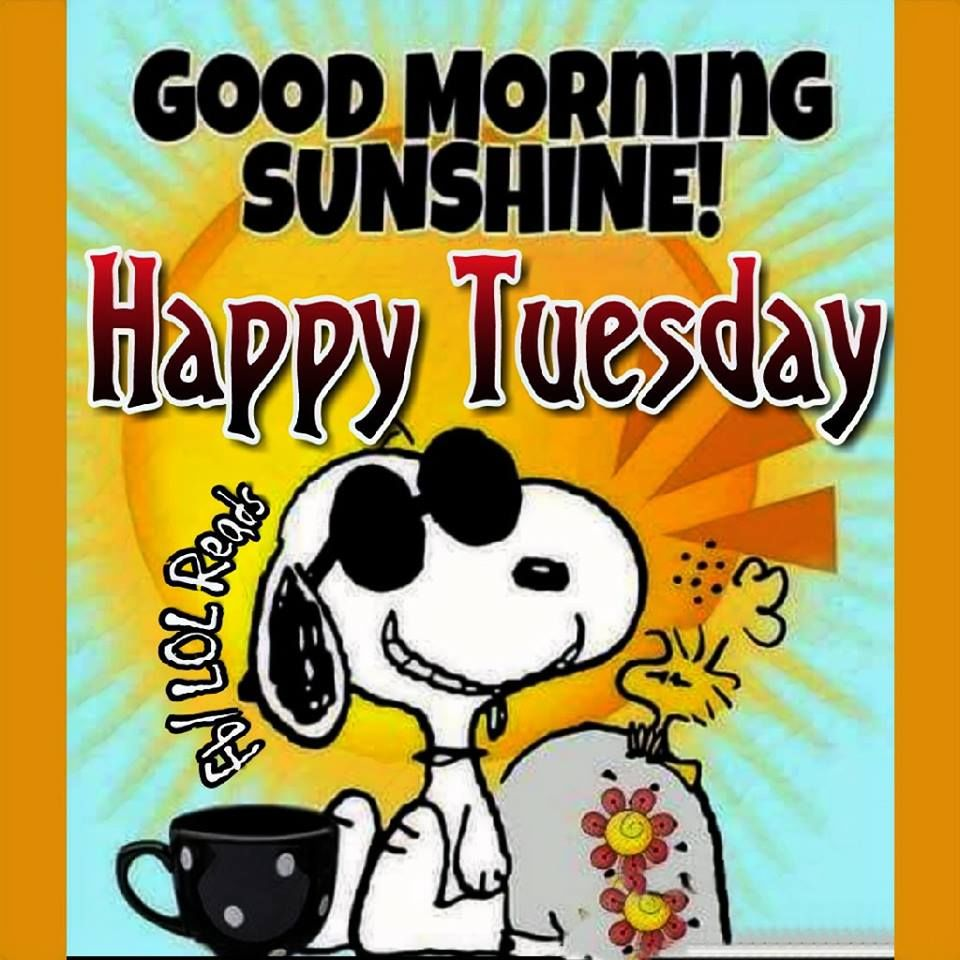 Snoopy Good Morning Sunshine Happy Tuesday Pictures