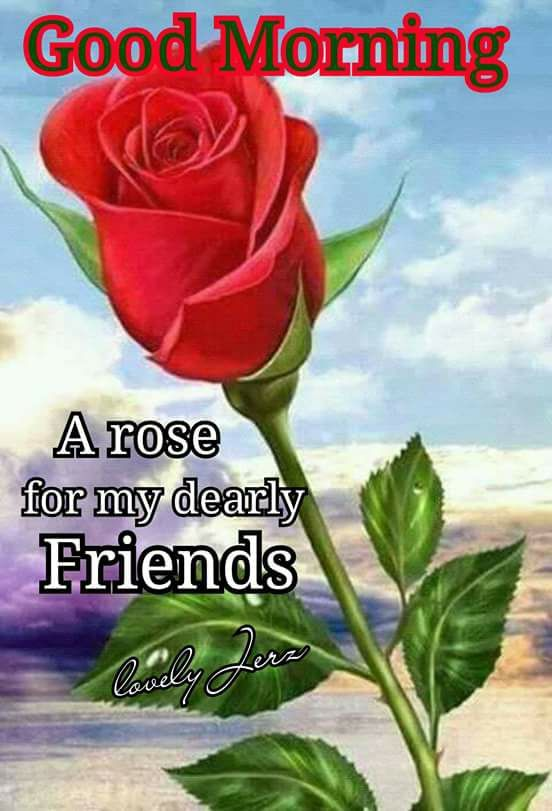 A Rose For My Dearly Friends, Good Morning Pictures