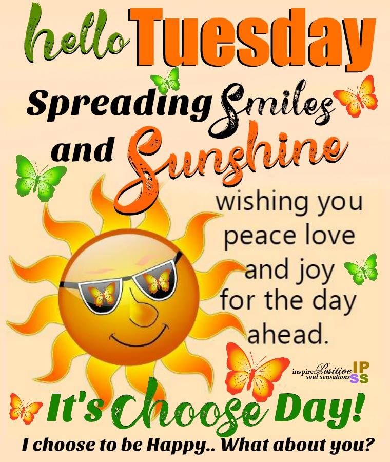 Smiles And Sunshine Happy Tuesday Pictures, Photos, and ...