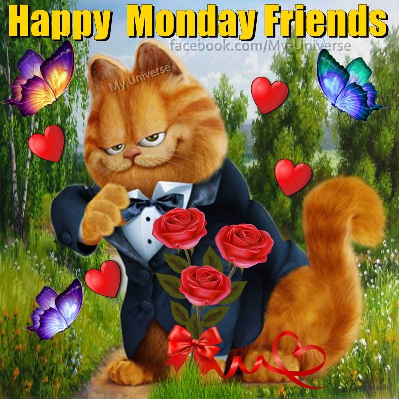Garfield Happy Monday Friends Pictures Photos And Images For Facebook Tumblr Pinterest And Twitter