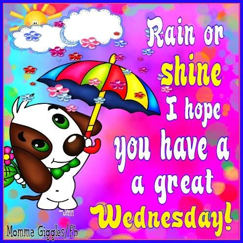 Rain Or Shine, I Hope You Have A Great Wednesday Pictures, Photos ...