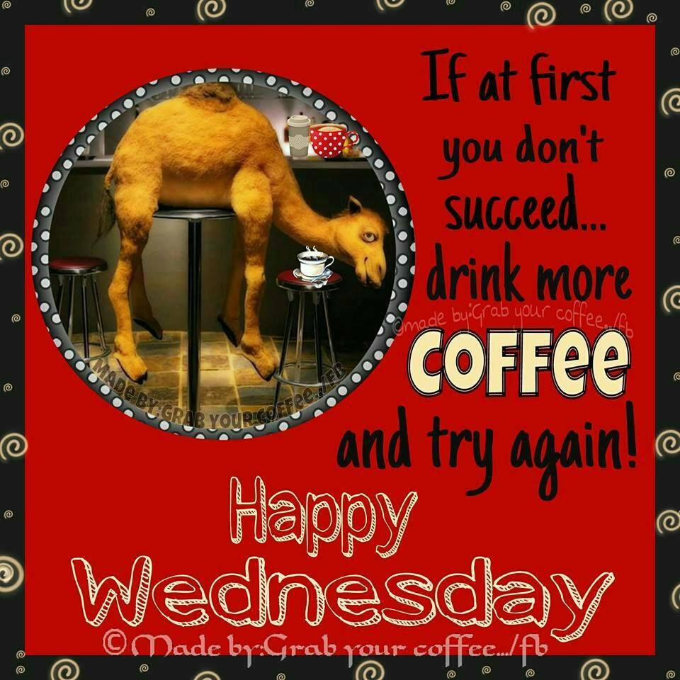 Happy Days Are Here Again Quotes: If At First You Don't Succeed...drink More Coffee And Try