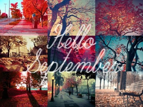 Fall Collage For Hello September Pictures, Photos, and
