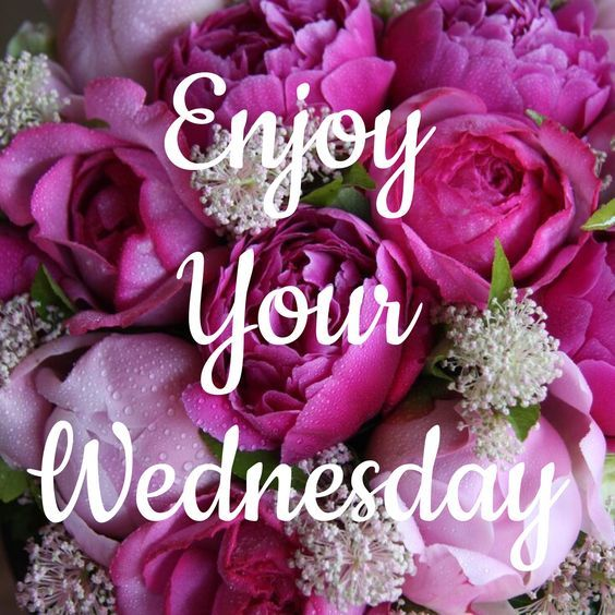 Enjoy Your Wednesday Pictures Photos And Images For
