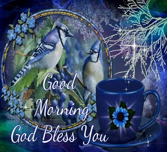 Blue Bird Good Morning God Bless You Pictures Photos