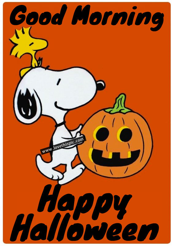 Snoopy good morning happy halloween pictures photos and - Snoopy halloween images ...