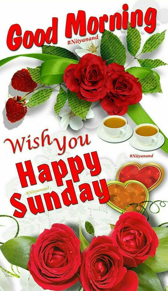 Wish You Happy Sunday,...