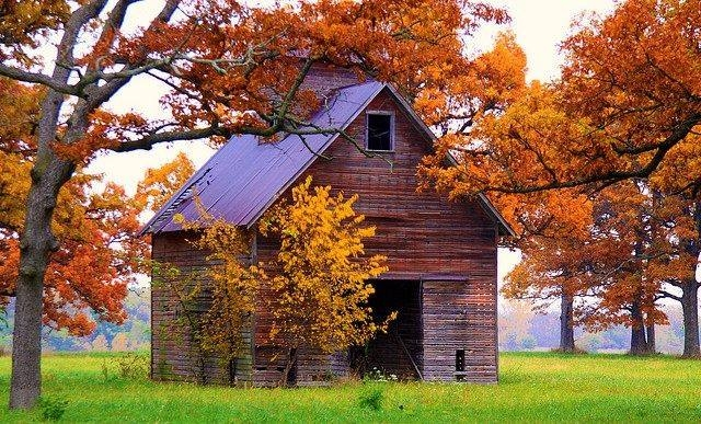 Old Barn In The Fall Pictures Photos And Images For