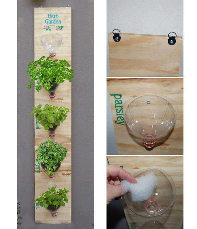 Diy plastic bottle herb garden pictures photos and for Diy plastic bottle