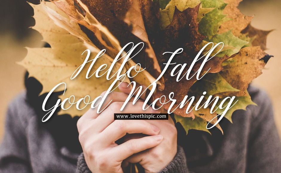 maple leaves hello fall good morning image pictures
