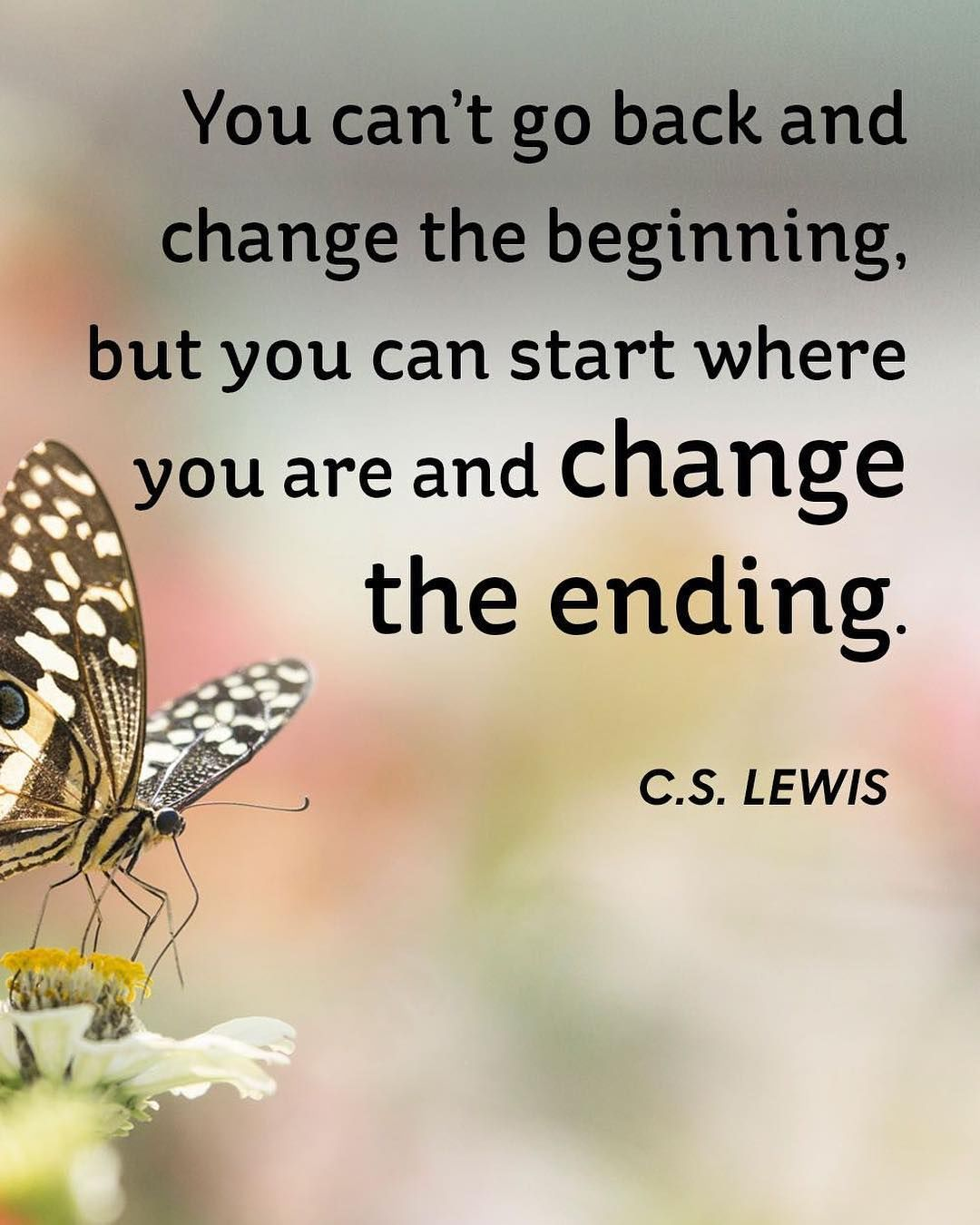 You Can't Go Back And Change The Beginning, But You Can