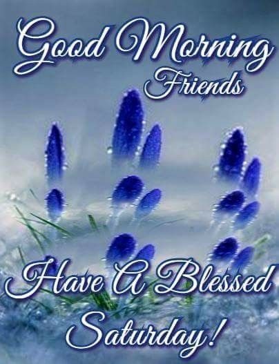 A Blessed Saturday Good Morning Pictures Photos and