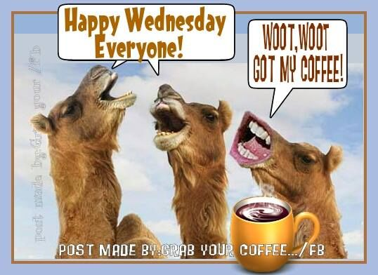 Woot, Woot, Got My Coffee! Happy Wednesday Everyone ...