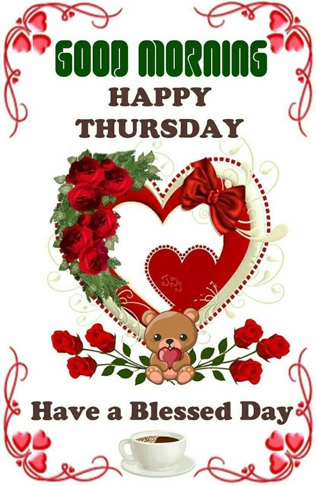 Teddy Good Morning Happy Thursday Image Pictures, Photos
