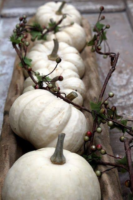 White pumpkins as a table centerpiece pictures photos
