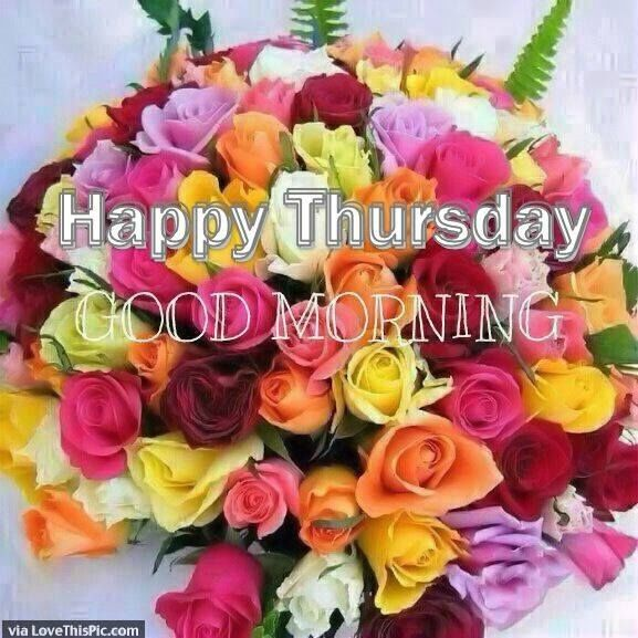 Colorful Rose Happy Thursday Good Morning Image Pictures