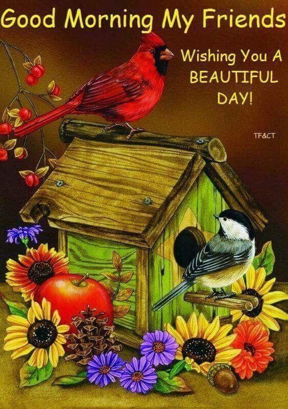 Wishing You A Beautiful Day, Good Morning My Friends ...