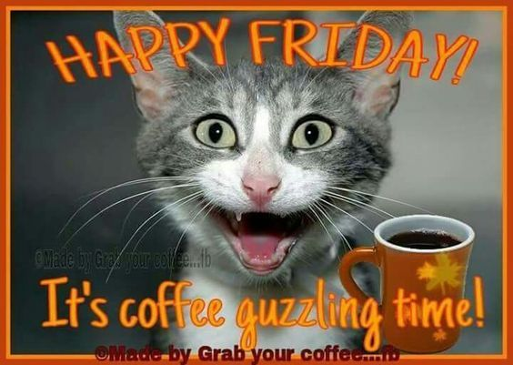 its coffee guzzling time happy friday pictures photos