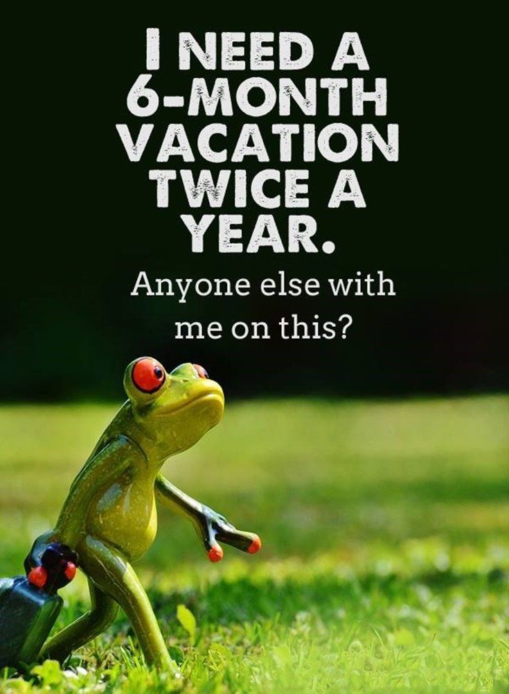 I Need A 6 Month Vacation Twice A Year Anyone Else With Me On This Pictures Photos And
