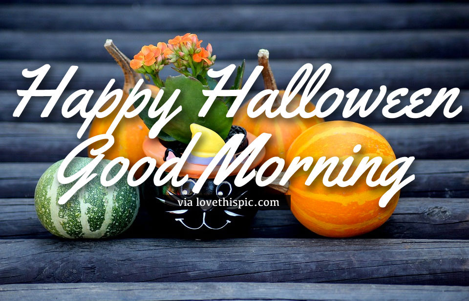 Decor Pumpkin Happy Halloween Good Morning Quote Pictures
