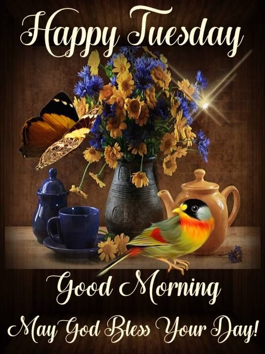 Bird Butterfly Floral Happy Tuesday Good Morning Quote