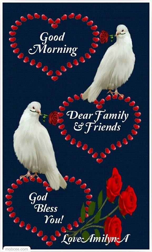 Dove Holding Rose Good Morning Quote Pictures, Photos, and