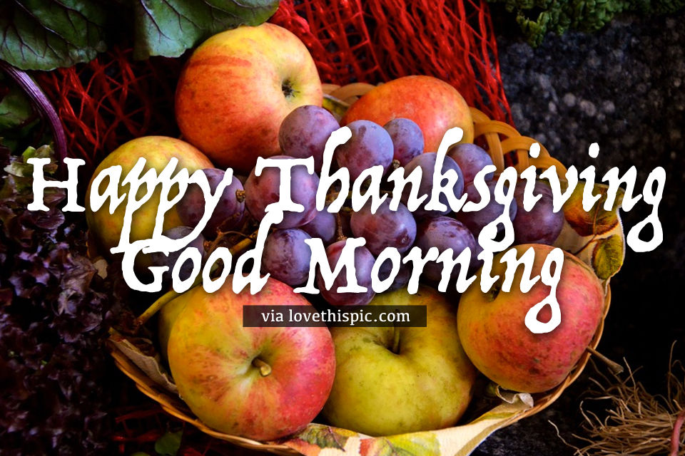 Good Morning Quotes With Fruits: Fruit Basket Happy Thanksgiving Good Morning Quote