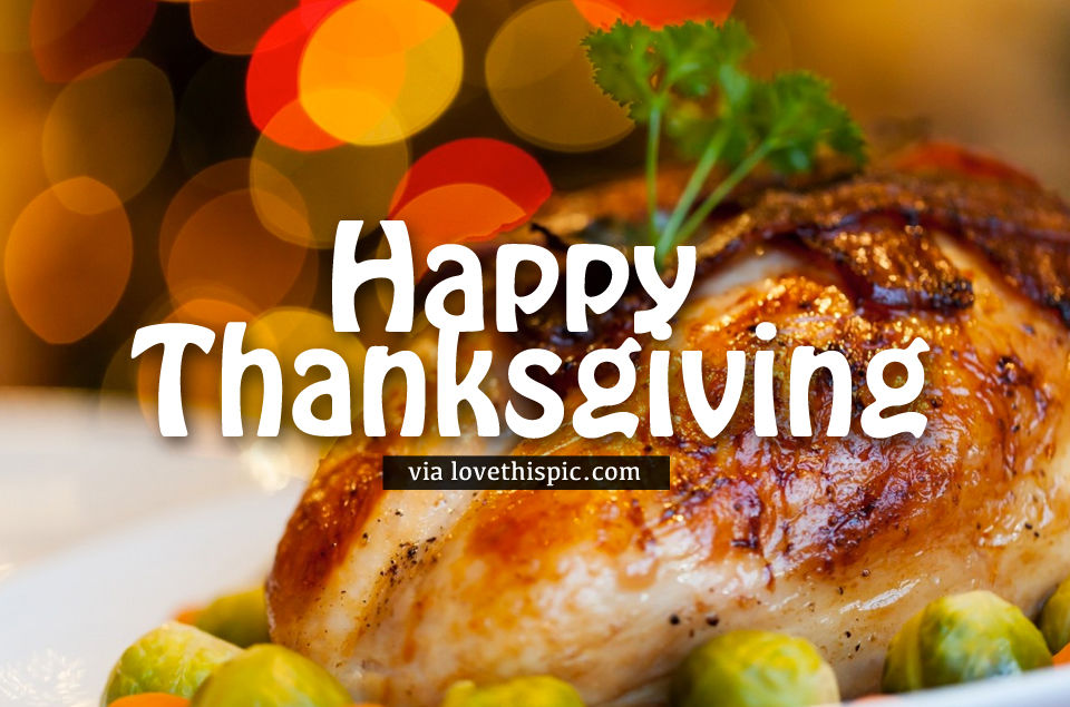 Chicken Happy Thanksgiving Quote Pictures Photos And Images For