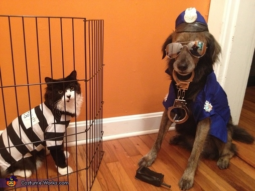 34270-Cat-Burglar-And-Police-Dog-.jpg