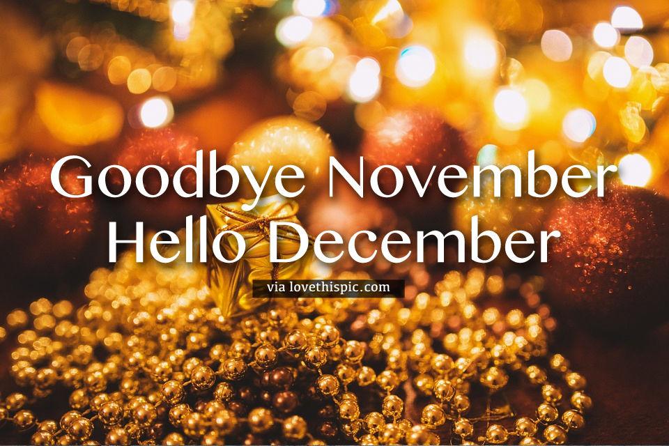 Bokeh Gold Goodbye November Hello December Pictures Photos And