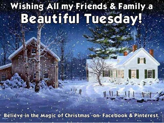 Winter Beautiful Tuesday Quote Pictures, Photos, and