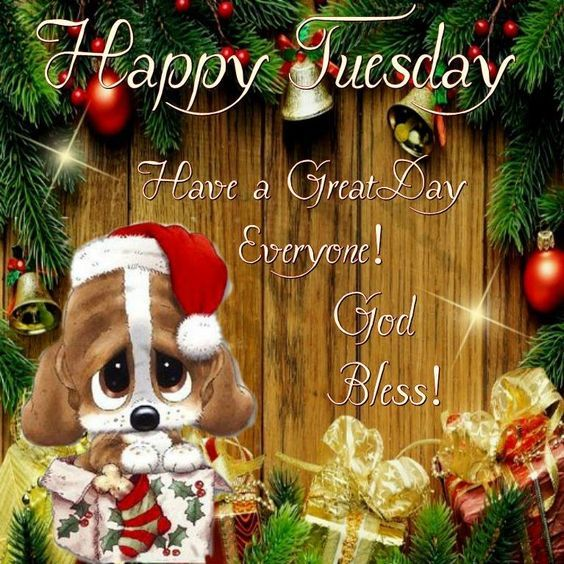 Puppy Christmas Decor Happy Tuesday Quote Pictures, Photos