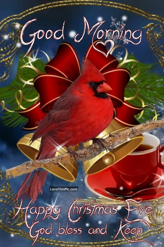 Good Morning Happy Christmas Eve God Bless You Pictures