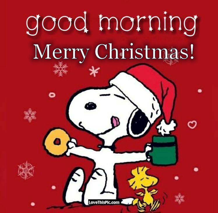 Snoopy Merry Christmas Images.Snoopy Good Morning Merry Christmas Pictures Photos And Images For