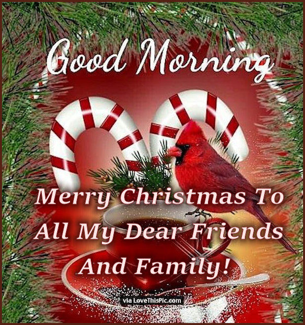 Merry Christmas Friends And Family.Merry Christmas Morning To All My Dear Friends And Family
