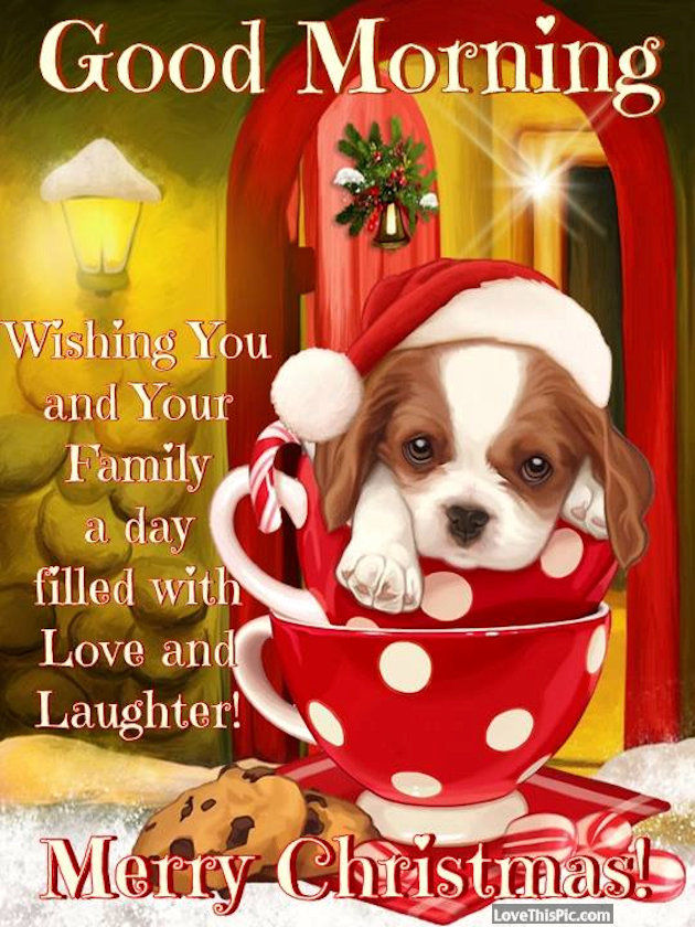 Good Morning Wishing You And Your Family A Day Filled With Laughter Merry  Christmas Pictures, Photos, and Images for Facebook, Tumblr, Pinterest, and  Twitter