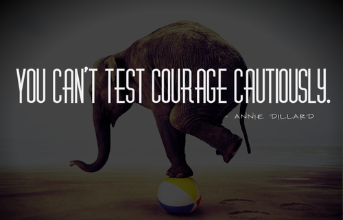 You Cant Test Courage Cautiously Pictures, Photos, And