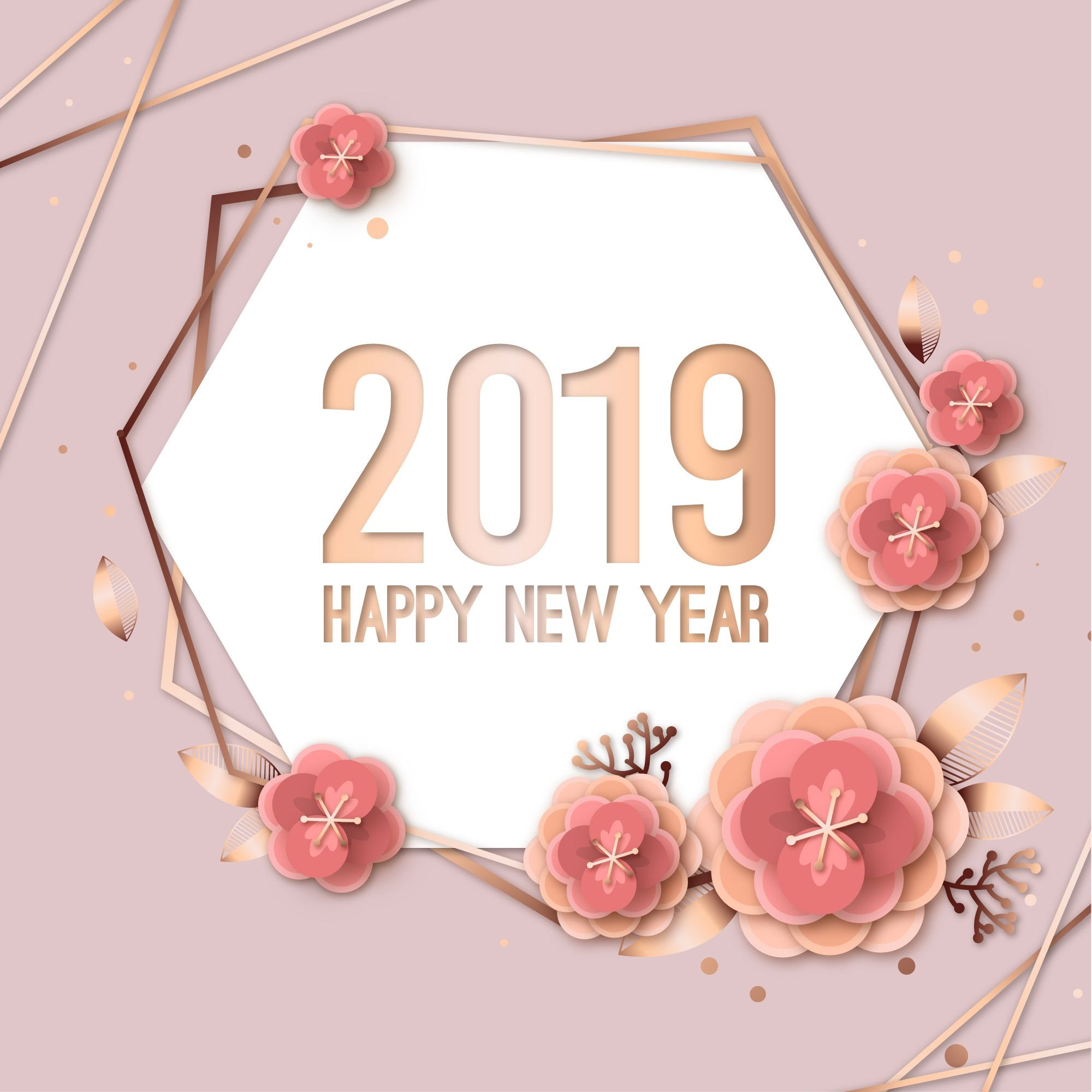 2019 Flowers Pictures, Photos, And Images For Facebook