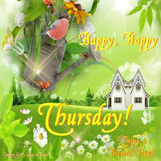 Bird Happy Happy Thursday Image Pictures, Photos, and