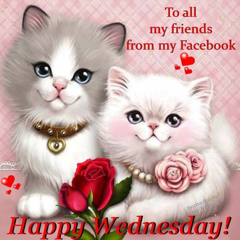 Good Morning Have A Beautiful And Happy Wednesday Pictures ...