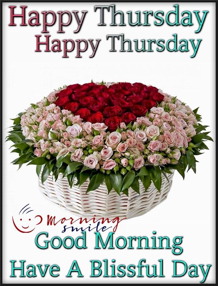 Blissful Thursday Morning Pictures, Photos, And Images For